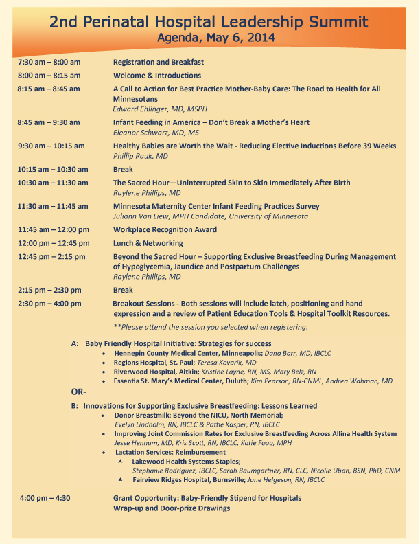 Past Perinatal Hospital Summits | MN Breastfeeding Coalition